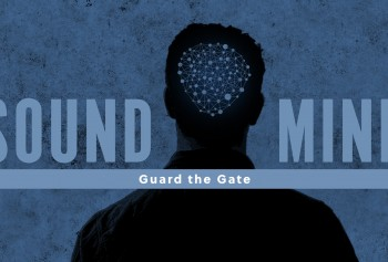 Guard The Gate